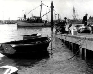 12 Crabbing on causeway Ser 1.jpg